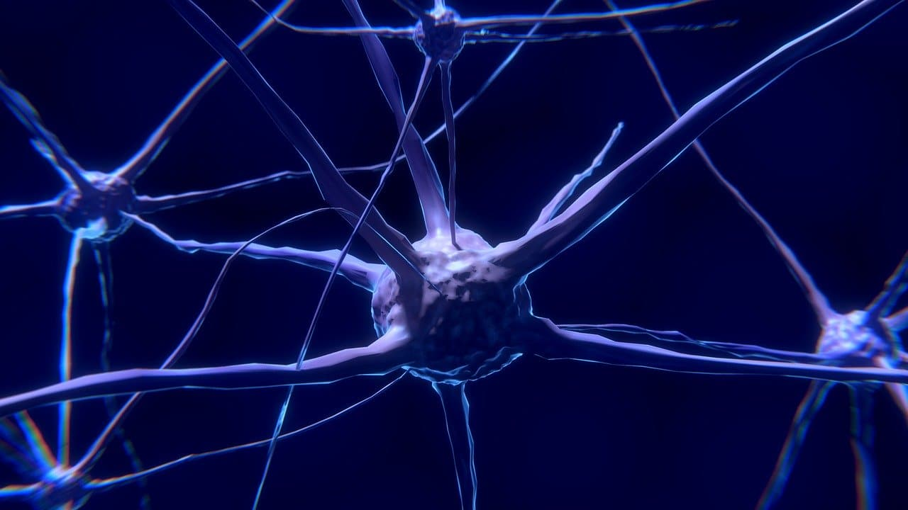 Biohacking Tools to Boost Your Brain