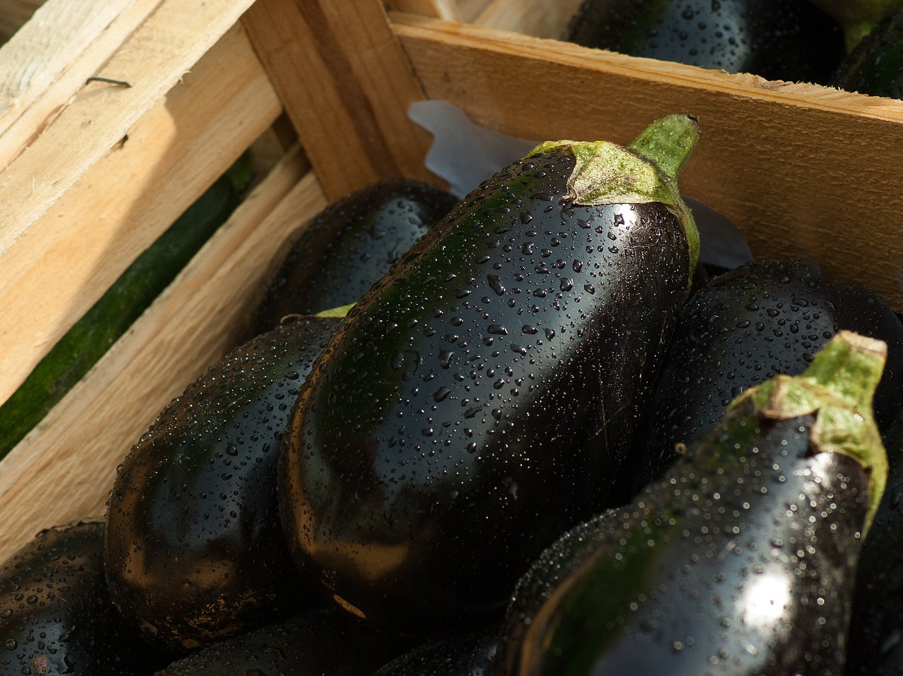 More Benefits From Eggplants