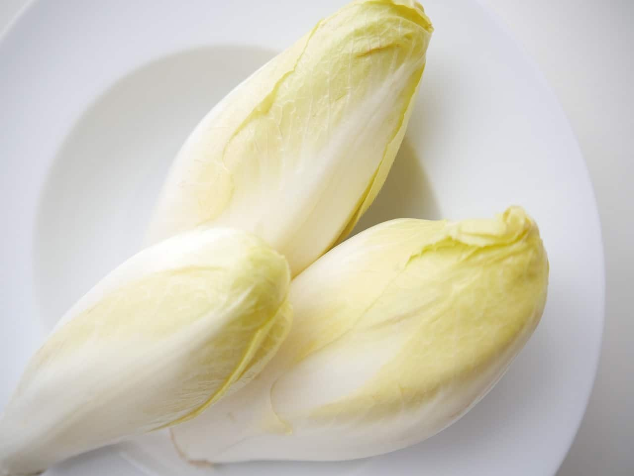 Here Comes the Chicory