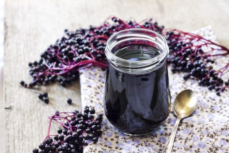 Add Elderberries to Your Immunity Health Arsenal