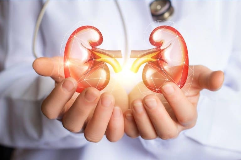 35 Years a Kidney