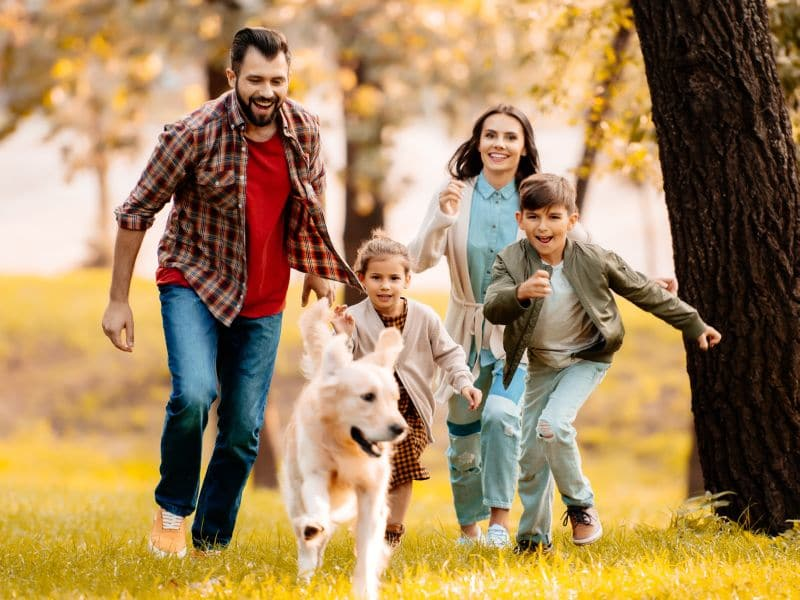 Autism and Animals: How Pets Help the Family
