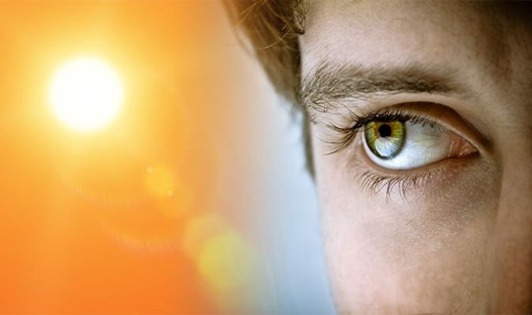 The Correlation Between and Vitamin D and Vision Loss