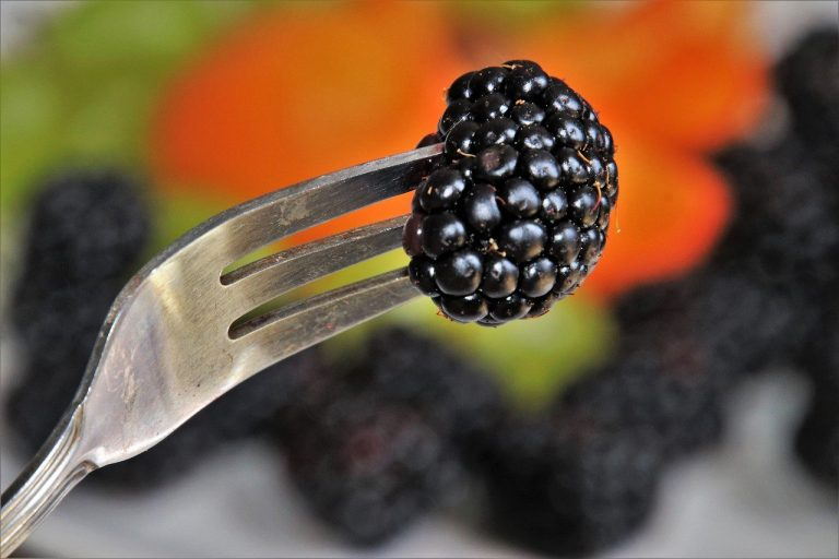 Black Raspberries For Skin Allergies? Who Knew?